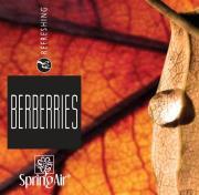 NÁPLŇ SPRING AIR - BERBERRIES 250 ml