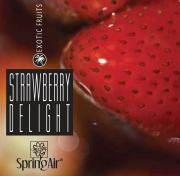NÁPLŇ SPRING AIR - STRAWBERRY DELIGHT 250 ml