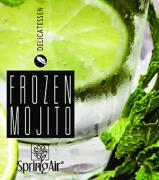NÁPLŇ SPRING AIR - FROZEN MOJITO 250 ml